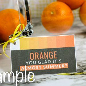 Oranges Teacher's Appreciation Gift