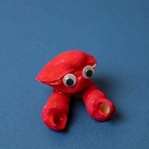 Seashell Crabs